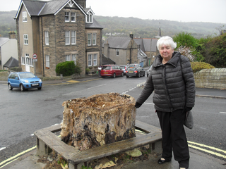 Sue Burfoot by controversial tree stump